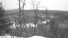 Wolf's Trail, Gatineau Park