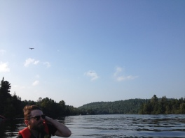 Looking suave, Gatineau River