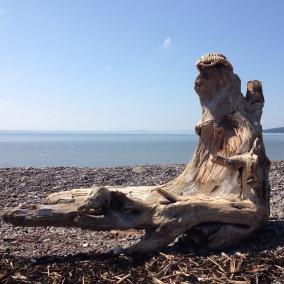 Scott's Bay, Bay of Fundy