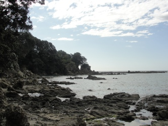 Whanarua Bay